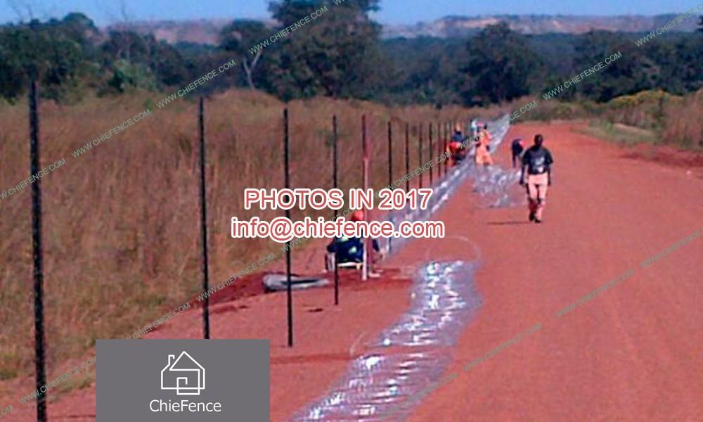 أسلاك الحلاقة لزمبابوي